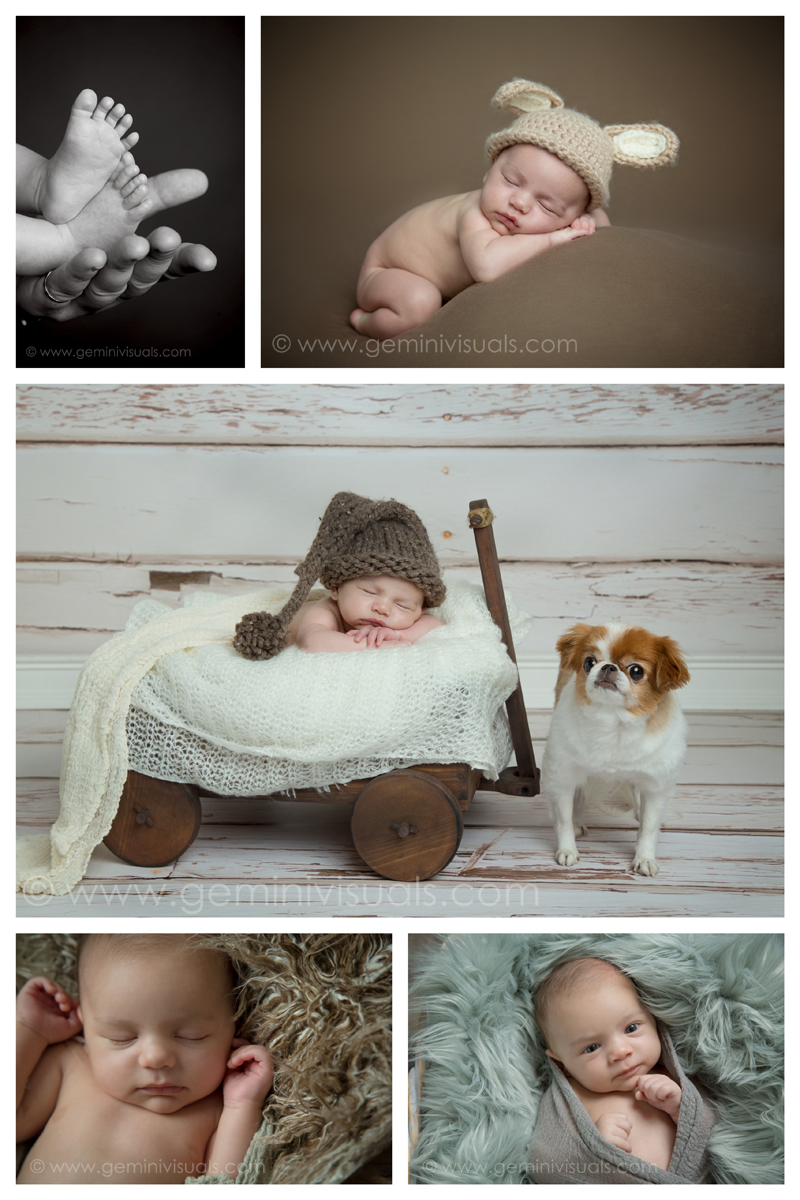 Newborh photographs baby with dog by gemini visuals creative photography