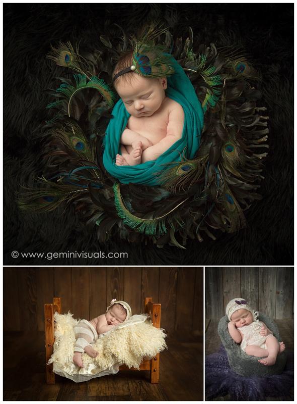 newborn photos peacock prop