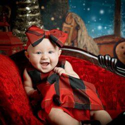 indoor christmas holiday minis richmond