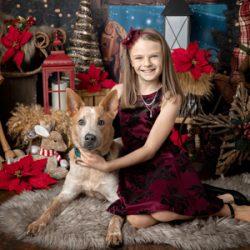 indoor christmas holiday minis surrey